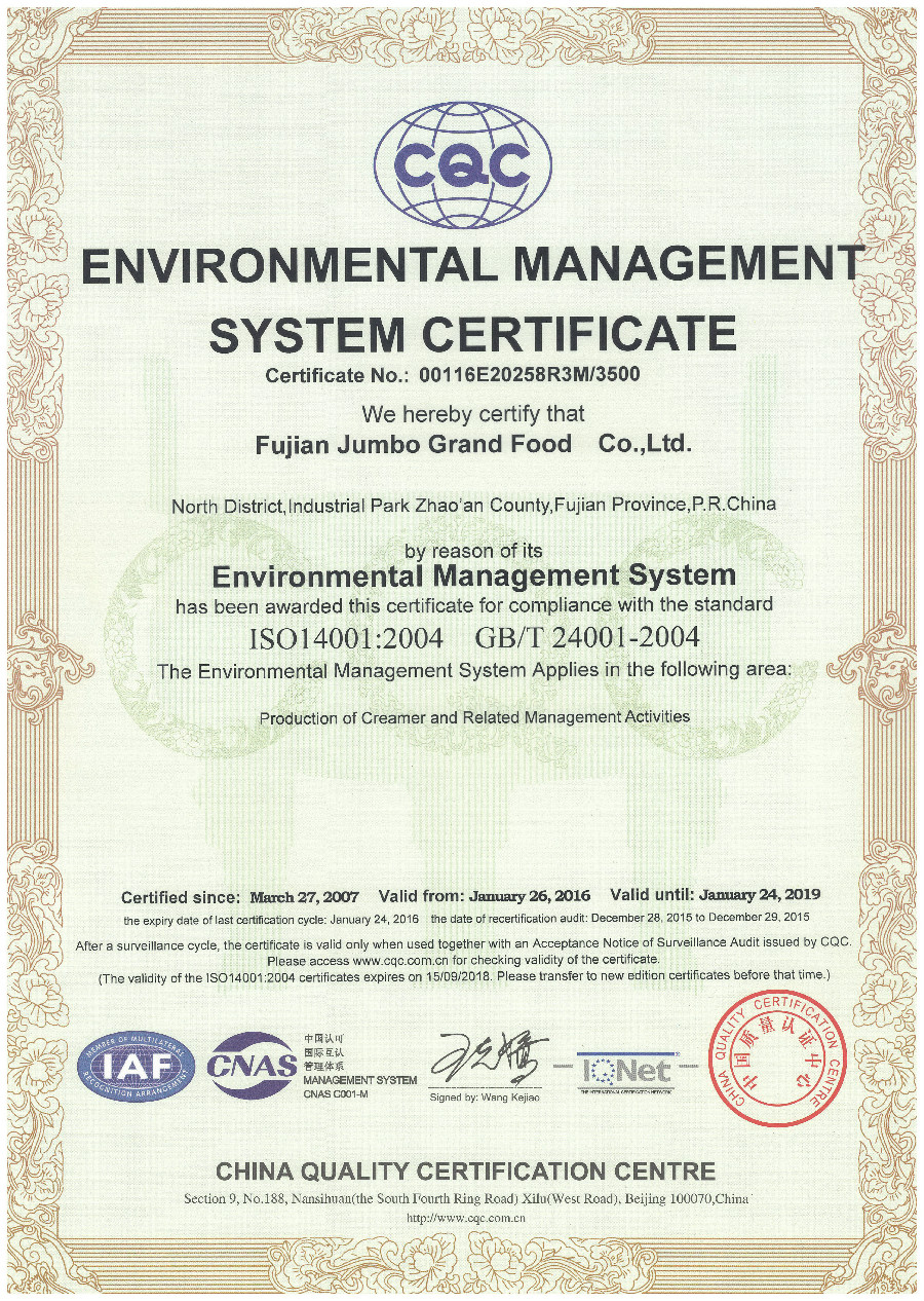 JUMBO GRAND-ISO14001 ENVIRONMENTAL MANAGEMENT SYSTEM CERTIFICATE
